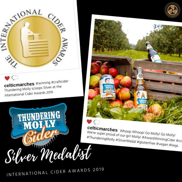 International Brewing & Cider Awards – Molly Takes Silver!